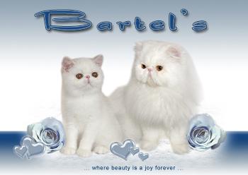 An den Beitrag angehängtes Bild: http://www.bartels-exo.dk/Noddy%20&%20Snowy%20link%202.jpg