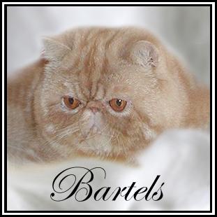 An den Beitrag angehängtes Bild: http://www.bartels-exo.dk/bartel1.jpg
