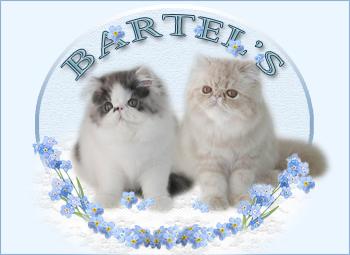 An den Beitrag angehängtes Bild: http://www.bartels-exo.dk/bobo&tutse%20banner%201.jpg