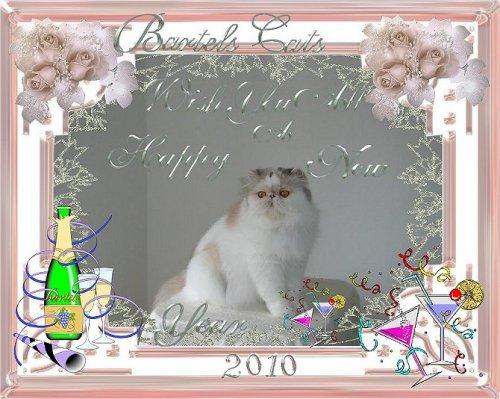 An den Beitrag angehängtes Bild: http://www.bartels-exo.dk/new%20year%202010%20banner.jpg