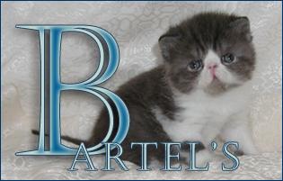 An den Beitrag angehängtes Bild: http://www.bartels-exo.dk/ns%2003%20banner%201%20.jpg